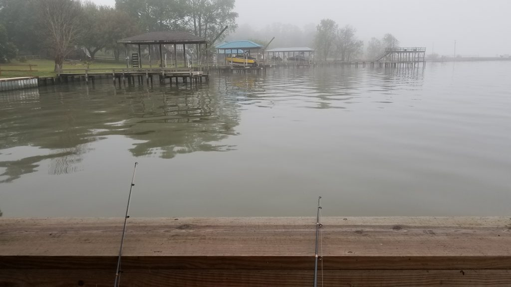 view from fishing dock